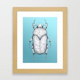 White Marble Beetle on Blue Background Framed Art Print
