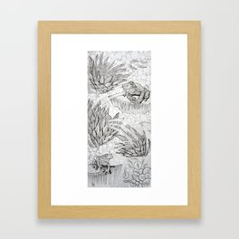 Protea Frogs Framed Art Print