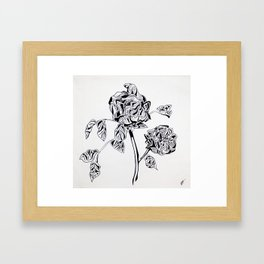 """""""A revolution is not a bed of roses"""" - Fidel Castro Framed Art Print"""