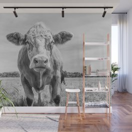 Animal Photography   Cow Portrait Minimalism   Farm animals   black and white Wall Mural