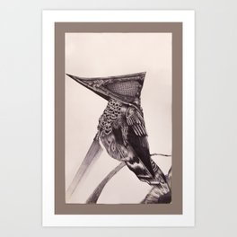Pyramid Headed Hummingbird Art Print