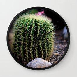 cactus in mexico Wall Clock