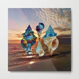 Florida Shells Sunset Metal Print