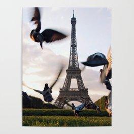 Paris Eiffel tower and flight of birds Poster