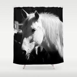 White Horse-Dark Shower Curtain