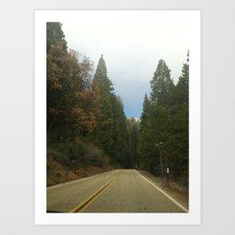 Sequoia National Park- Road Art Print