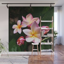 Love's First Blush Hawaiian Plumeria Wall Mural