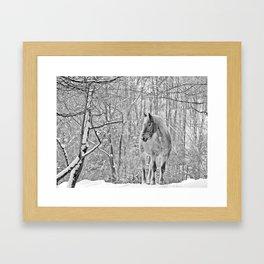 BW lost  Framed Art Print