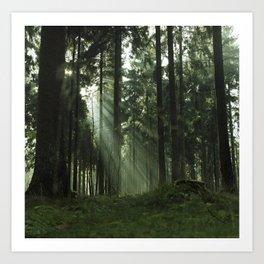 Forrest one Art Print