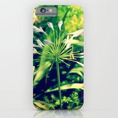 littleflowers iPhone 6 Slim Case