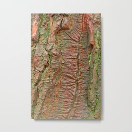 Mossy Wood Rifts Metal Print