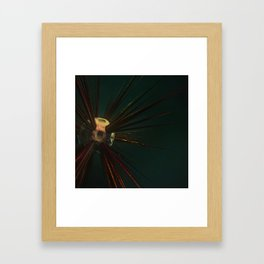 Urchin Framed Art Print