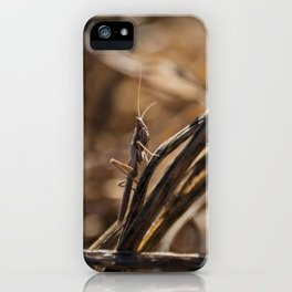 Hidden grashopper iPhone Case