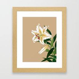 Vintage Japanese Lilly. White, Green and Beige Framed Art Print
