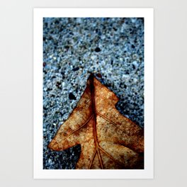 One Leaf Art Print