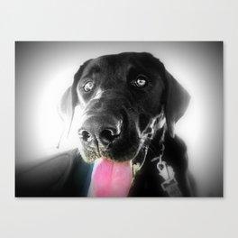 Puppy  l o v e Canvas Print