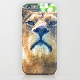 Lion Frown iPhone Case