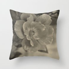 Classic Beauty Throw Pillow