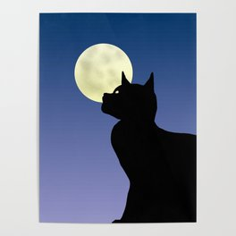 Moon and black cat Poster