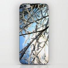 Sunny Morning iPhone & iPod Skin
