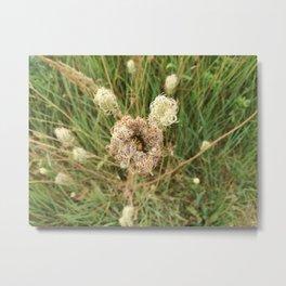 Ungewisse Blume Metal Print