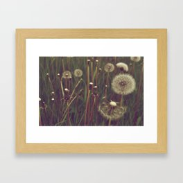 Make a Wish. Framed Art Print