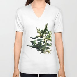 Jade - money plant - succulent in bright light Unisex V-Neck
