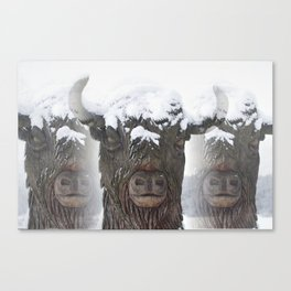 Bisons Canvas Print