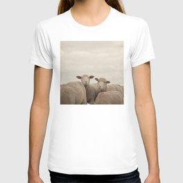 Smiling Sheep  T-shirt