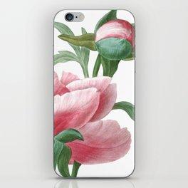 HIGHEST QUALITY botanical poster of Peony iPhone Skin