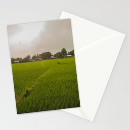 The Rice Paddies of Nepal 001 Stationery Cards