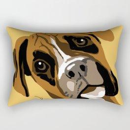Boxter Rectangular Pillow
