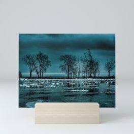 Distorted Reflections Mini Art Print