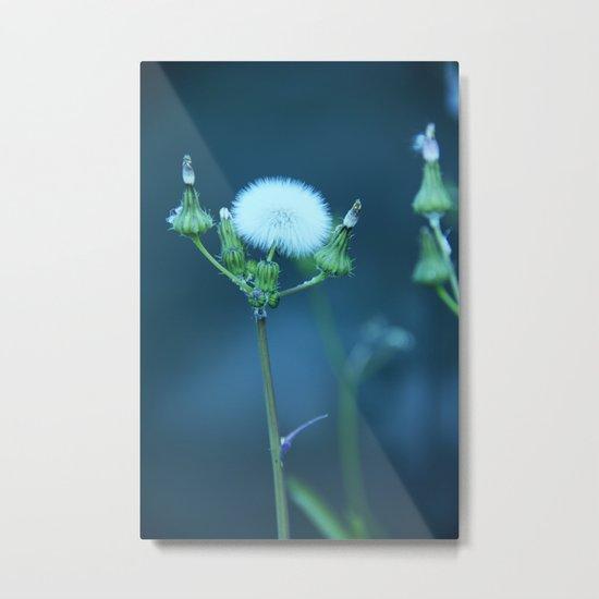 One More Wish (Blue) Metal Print