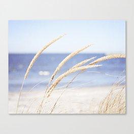Beach Grass Blue Photography, Coastal Ocean Landscape, Sea Seashore Seascape Shore Canvas Print