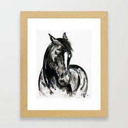 Play of Light - Black and white horse painting Framed Art Print