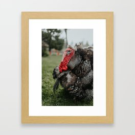 Larry Framed Art Print