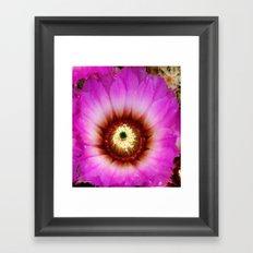 Cactus Flower II Framed Art Print