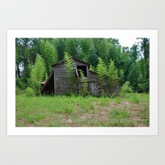 Hidden Shack 2 Art Print