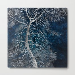 Midnight Silver tree - Black Poplar Metal Print