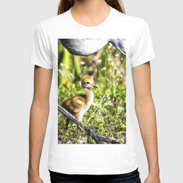 Watchful Eye T-shirt