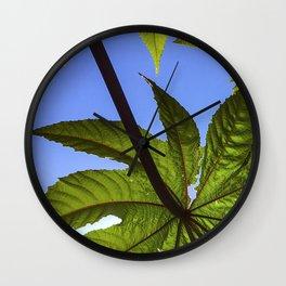 Castor Bean Wall Clock