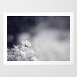 Meadow Cranesbill Art Print