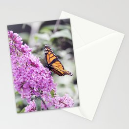 Longwood Gardens Autumn Series 136 Stationery Cards