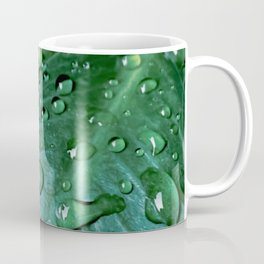 Closeup green leaves plant texture with drop of water Coffee Mug