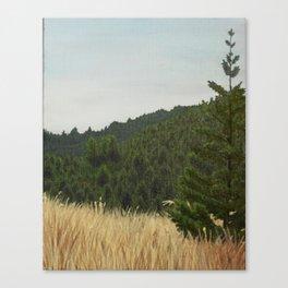 Mt. Tamalpais Canvas Print