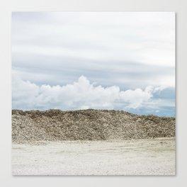 Oyster Shell Sky, Washington Landscape, Seashell Photograph, Northwest Canvas Print