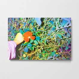 POP FLOWER Metal Print