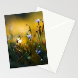 The Valley of Giants Stationery Cards