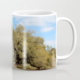 Southern Live Oaks Coffee Mug